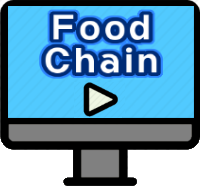 Food Chain Videos